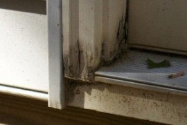 Prevent Wood Rot This Season With Pvc Your Maintenance