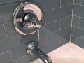 Chrome Shower Fixture